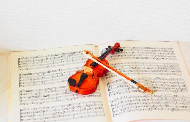 【バイオリン弾いてみた】少年時代